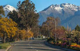 New-Zealand-Queenstown-Fiordland-Milford-Road-1