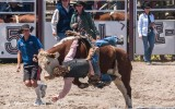 te-anau-rodeo-fiordland-new-zealand-1