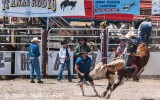 te-anau-rodeo-fiordland-new-zealand-2